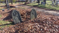 The Grave Couple